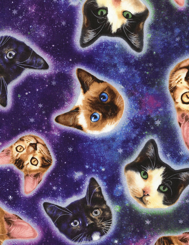 Cotton/Spandex Knit Galaxy Cat Heads in Space Blue