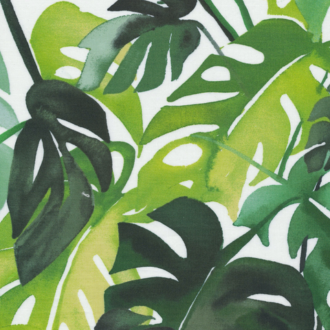 Matte Cotton Laminates by Cloud9 Philodendron by Yao Cheng Green 60""