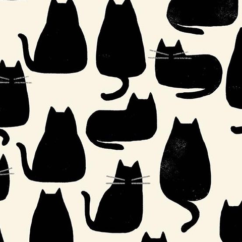 Home by Sarah Golden Whiskers Chat Noir
