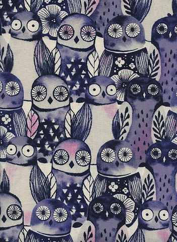 Eclipse by Sarah Watts Wise Owls Night