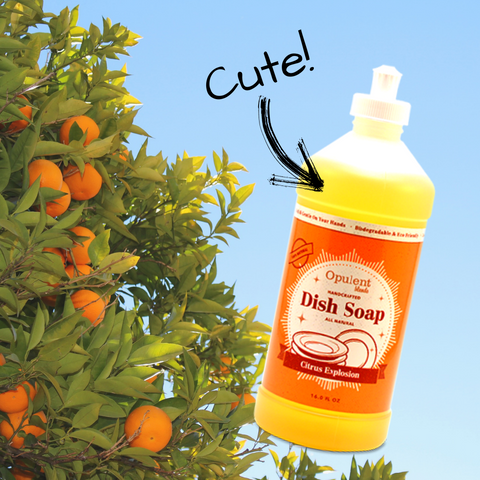 Image of Opulent Brands dish soap and orange tree