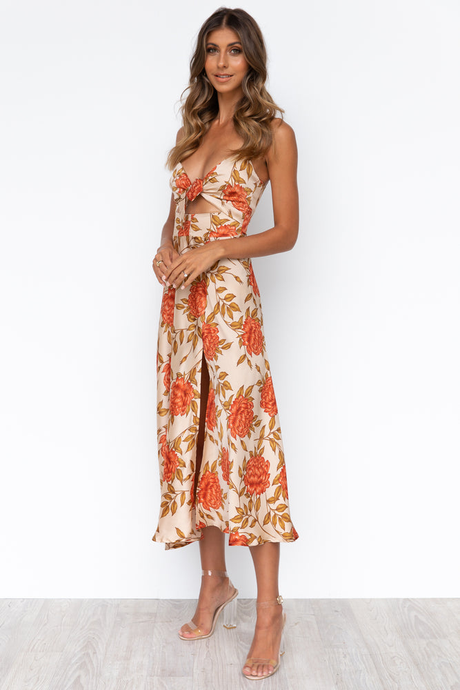 Zazu Dress - Autumn