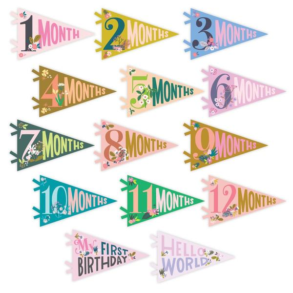 "Lucy Darling ""Little Artists"" Baby Milestone Month Pennants in box"