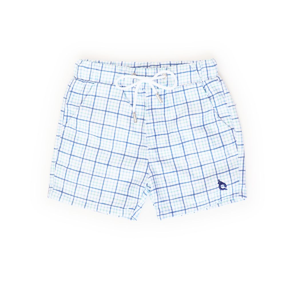 Blue Quail Clothing Co | Swim Trunks | Watercolor Tattersall