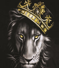 Fierce Lion and Crown Black V-Neck T-Shirt – Women's - Zion Graphic Collectibles