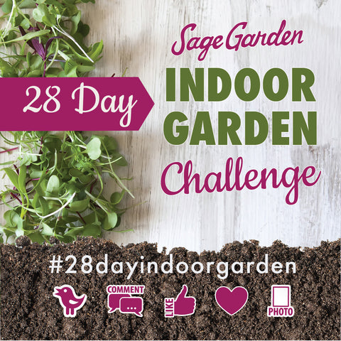 28 Day Indoor Garden Challenge