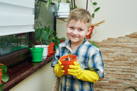 Child gardening in classroom