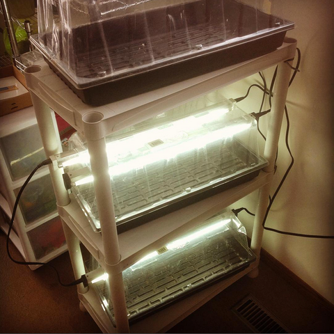 Full spectrum grow lights, for growing indoor greens