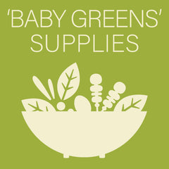 Baby greens supplies at Sage Garden