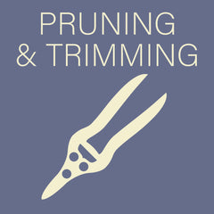 Pruning and Trimming Tools at Sage Garden