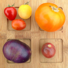 Colourful tomatoes at Sage Garden
