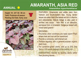 Amaranth, Asia Red (Live Plant)