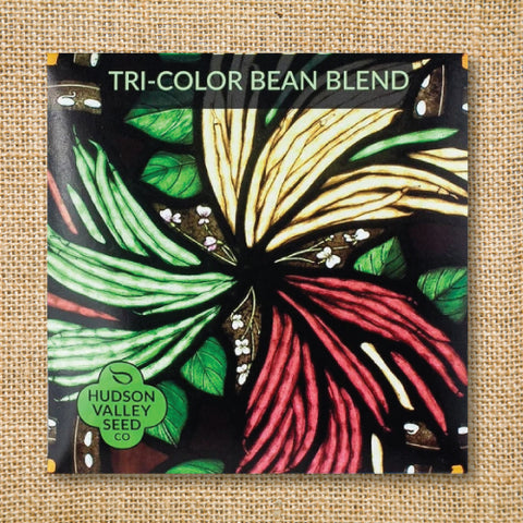 Seeds - Art Pack - Bean, Tri-Color Blend OG