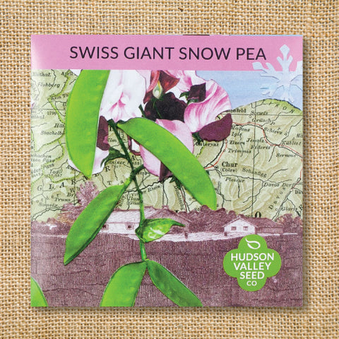 Seeds - Art Pack - Pea, Swiss Giant Snow OG