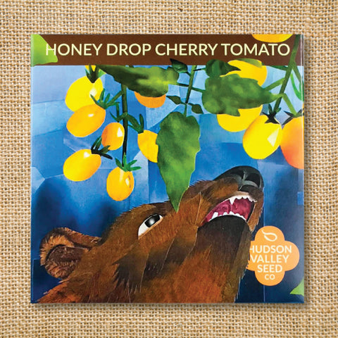 Seeds - Art Pack - Tomato, Honey Drop Cherry OG