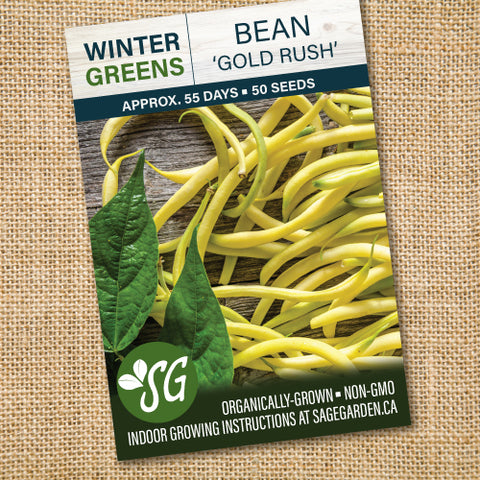 Organic Bean, Gold Rush - 50 seeds