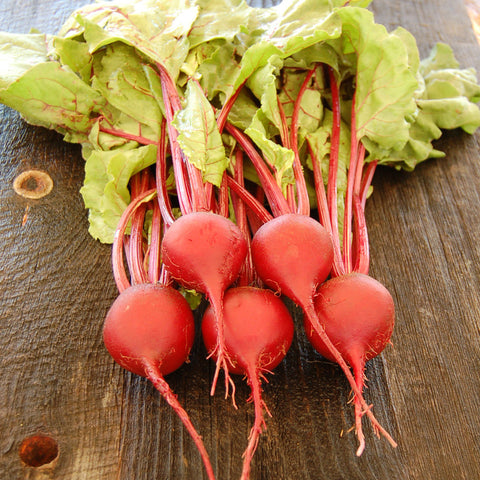 Beet, Early Wonder Tall Top Organic