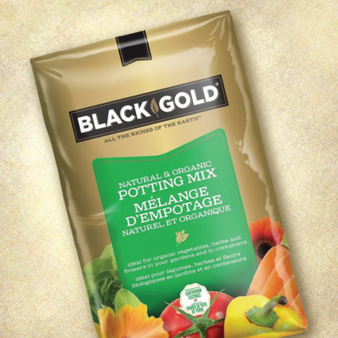Black Gold Natural and Organic Potting Mix