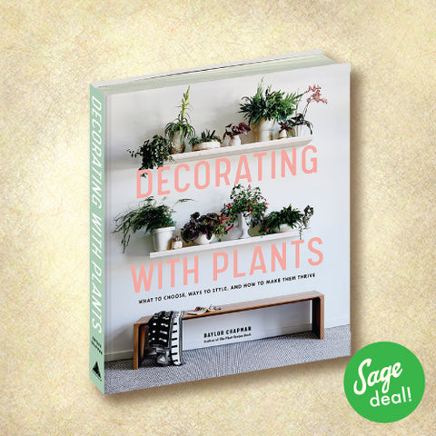 Decorating with Plants - What to Choose, Ways to Style, and How to Make Them Thrive