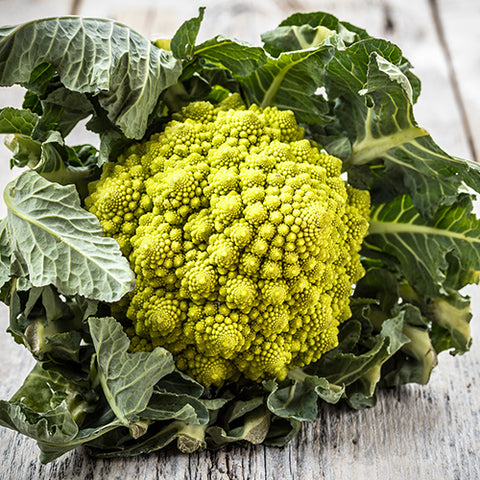 Seeds - Cauliflower, Veronica Romanesco OG (SGH)