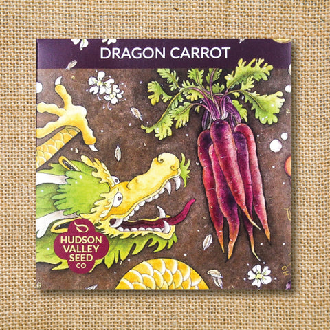 Seeds - Art Pack - Carrot, Dragon (Organic)