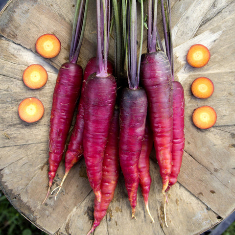 Organic Cosmic Purple Carrot