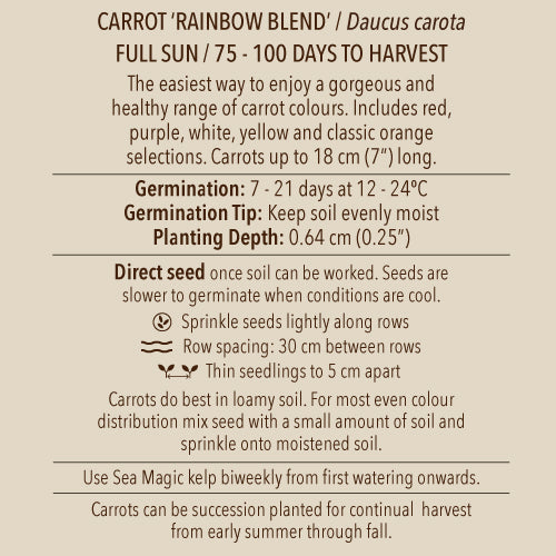 Seeds - Carrot, Rainbow Blend OG