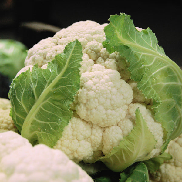 Organic Snowball Y Cauliflower