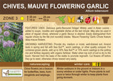 Chives 'Mauve Flowering Garlic' (Live Plant)