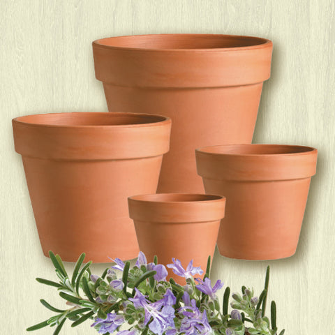 Terracotta Clay Pot - Standard