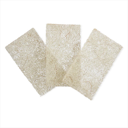 Scour Pads - Beachy Clean Heavy Duty Coconut 3-Pack