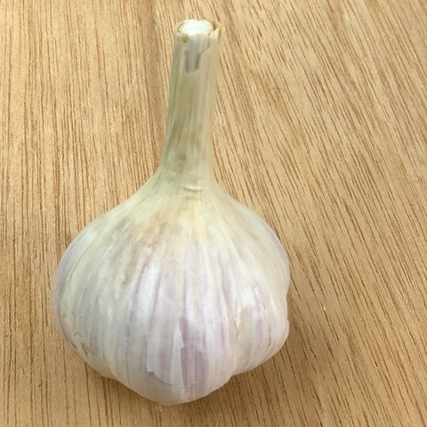 Bulbs - Garlic, Crystal White OG