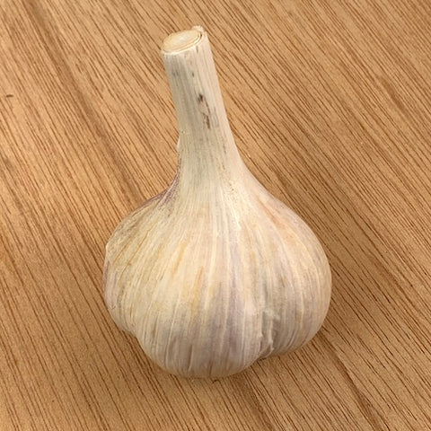 Bulbs - Garlic, Newfoundland OG