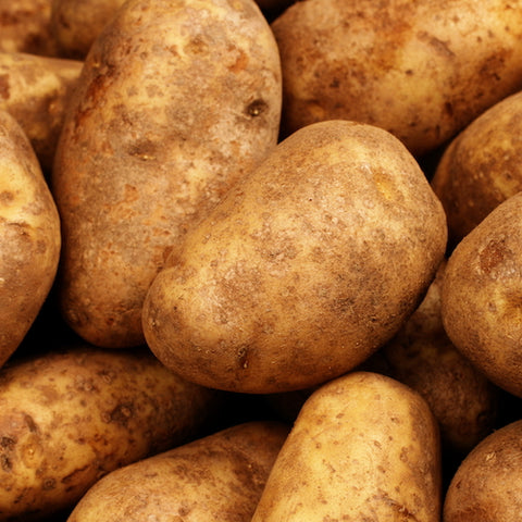 Seed Potato - Gold Rush (Certified Organic) (SPOG)