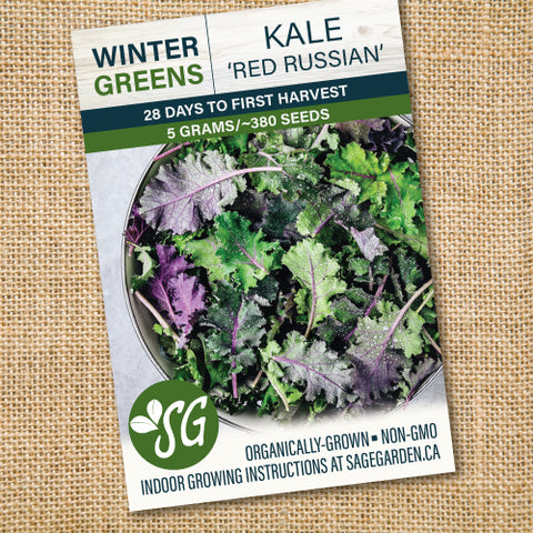 Organic Red Russian Kale - 5g