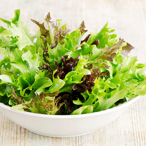 Seeds - Lettuce, Gourmet Mix