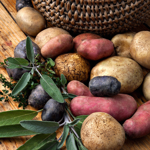 Seed Potato - Grower's Mix (Certified Organic)