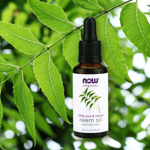 Now® Neem Oil 30ml