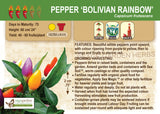 Pepper, Bolivian Rainbow (Live Plant)
