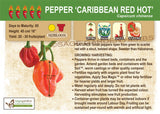 Pepper, Caribbean Red Hot (Live Plant)