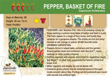 Pepper, Basket of Fire (Live Plant)