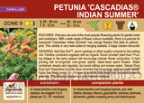 Petunia 'Cascadias™ Indian Summer' (Live Plant)