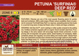 Petunia 'Surfinia® Deep Red' (Live Plant)