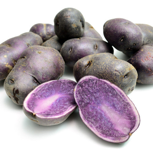 Seed Potato - All Blue (Certified Organic)