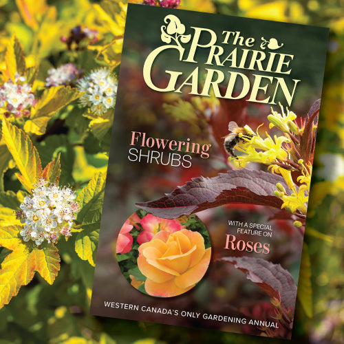 The Prairie Garden - Flowering Shrubs, with a Special Feature on Roses