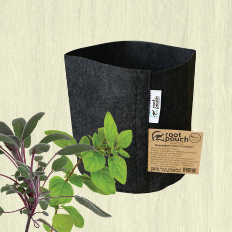Root Pouch Geotextile Pot - Made from Recycled Bottles