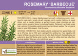 Rosemary 'Barbecue' (Live Plant)
