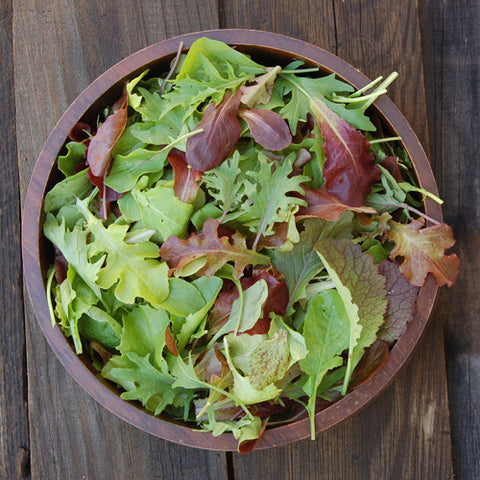 Organic mesclun mix seeds for growing baby greens