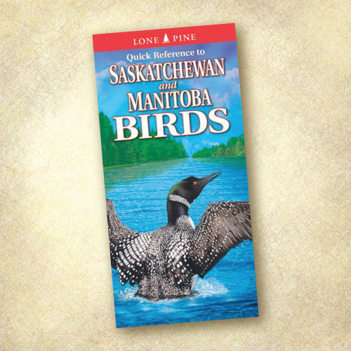Quick Reference to Saskatchewan And Manitoba Birds
