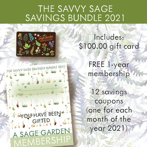 Savvy Sage Savings Bundle 2021